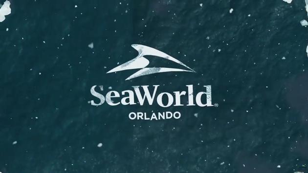 seaworld new roller coaster 2020