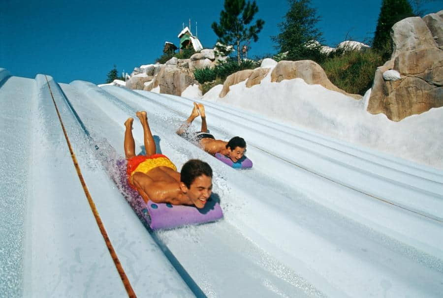 Toboggan Racers disney blizzard beach
