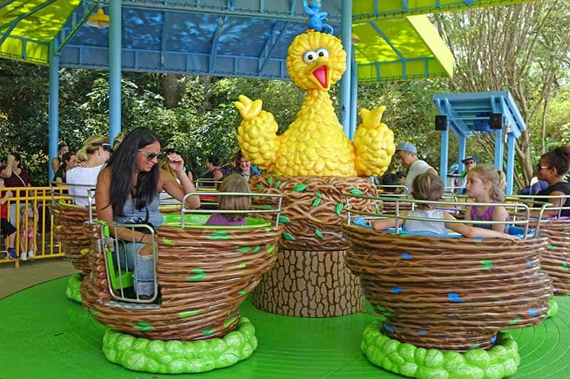 sesame-street-big-bird-spin
