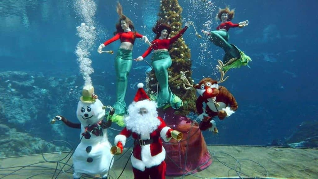 christmas-weeki-wachee-mermaid