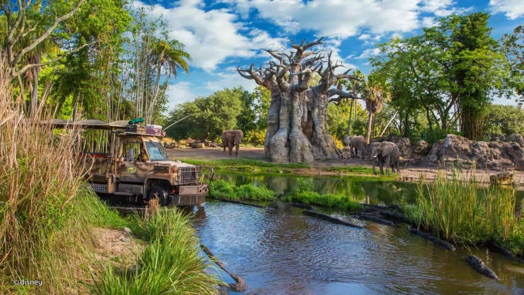 animal-kingdom-kilimanjaro-safaris.jpg