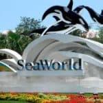 seaworld orlando entrance