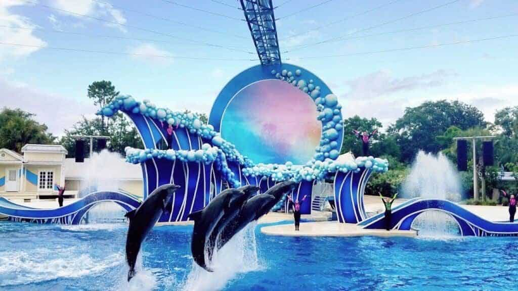 touch-the-sky-dolphins-electric-ocean-seaworld-orlando