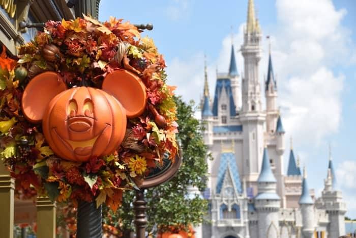 dmk pumpkins